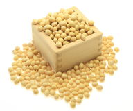 Soybeans in a wooden box Stock Images