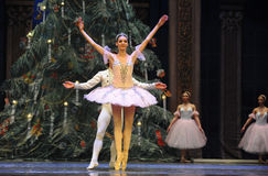 Soyez dans l'amour avec chaque autre-Le casse-noix de ballet Photos libres de droits