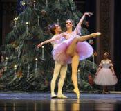 Soyez dans l'amour avec chaque autre-Le casse-noix de ballet Image libre de droits