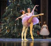 Soyez dans l'amour avec chaque autre-Le casse-noix de ballet Images stock