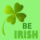 soyez irlandais Image libre de droits