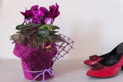 Soyez romantique Chaussures et fleurs rouges de talon haut du ` s de femmes Images stock