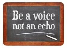 Soyez une voix, pas un conseil d'écho Photo stock