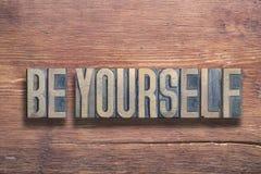 Soyez vous-même en bois image stock