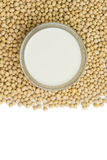 Soymilk and soy beans Royalty Free Stock Image
