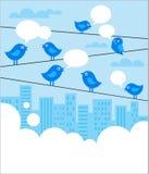 Sozialnetzhintergrund mit blauen Vögeln stock abbildung