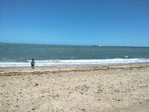 Sozinho em uma praia fotos de stock royalty free