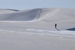 Sozinho em uma terra frágil Fotografia de Stock