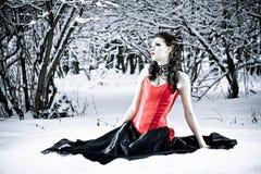 Sozinho na floresta do inverno foto de stock royalty free