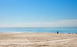 Sozinho na praia Fotografia de Stock