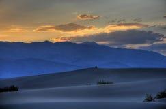 Sozinho no deserto Imagens de Stock Royalty Free