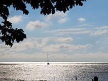 Sozinho no lago Fotos de Stock Royalty Free