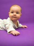Spädbarn på en purpurfärgad bakgrund arkivbild