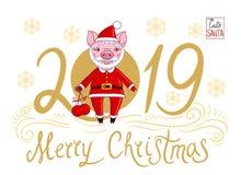 Spädgris i rollen av Santa Claus som rymmer i hans handjulbollar royaltyfri illustrationer