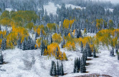 Später Autumn Landscape Stockbilder