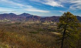 Später Autumn View des Gans-Nebenfluss-Tales und des blauen Ridge Mountainss stockfoto