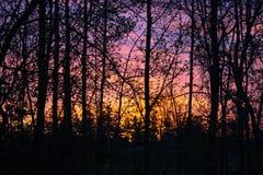 Später Fall-glänzender Sonnenuntergang lizenzfreie stockfotos