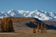 Spätherbst in den Altai-Bergen Stockfotos