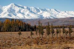 Spätherbst in den Altai-Bergen Stockbilder