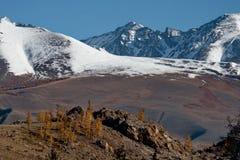 Spätherbst in den Altai-Bergen Stockfoto