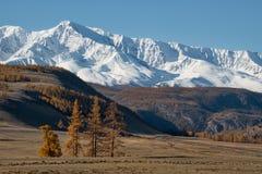 Spätherbst in den Altai-Bergen Lizenzfreie Stockfotos