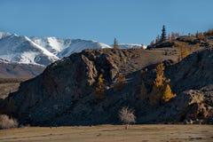 Spätherbst in den Altai-Bergen Lizenzfreie Stockbilder