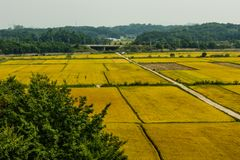 Sp?therbstpaddylandschaft in Korea stockbild
