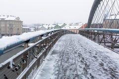 Spång Ojca Bernatka - bro över Vistulaet River Fotografering för Bildbyråer