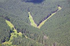 Spår av Bukovel skidar semesterorten i sommar, Carpathian berg Royaltyfri Bild