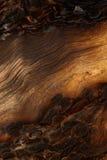 Spår av en brand på ett gammalt sörjer, vertikal bakgrund Royaltyfria Foton