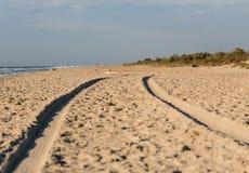 Spår av gummihjulet i sand Royaltyfri Bild