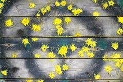 Spår av paintball på trämålet royaltyfri bild