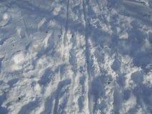 Spår av pulkan på snö Arkivfoton