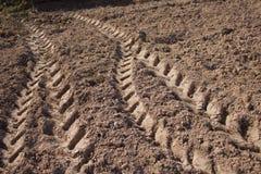Spår av traktoren Royaltyfri Foto