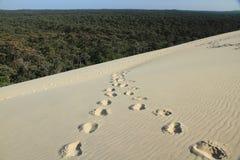Spår av två personer sammanfogar i sanden Arkivfoton