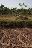 Spår från traktoren Royaltyfria Foton
