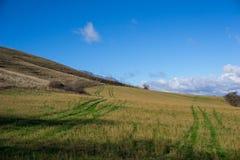 Spår i fälten, Umbria, Italien Royaltyfri Foto