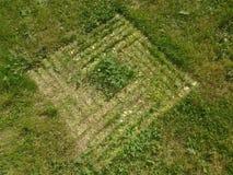 Spår i gräs Arkivfoto