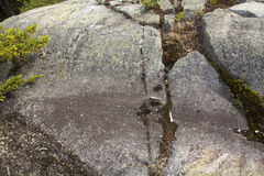 Is- spår i granitberggrund, Mt Kearsarge New Hampshire Royaltyfri Foto