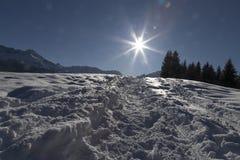 Spår i vintern Royaltyfri Fotografi