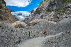 Spår på Franz Josef Glacier, Nya Zeeland royaltyfri bild