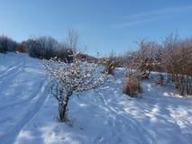 Spår på insnöat bergen Den härliga vintern landscape Arkivfoton
