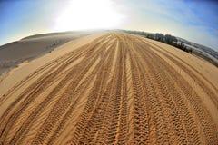 Spårar på sanden Arkivbild