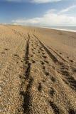 Spåret hjulbrunst på Chesilen sätter på land Fotografering för Bildbyråer