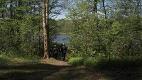 Spåring av den lyckliga den flädermannen och kvinnan med ryggsäckar och trekking poler som fotvandrar längs skogslinga Gammalare  lager videofilmer