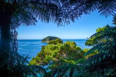 Spårsikt i Abel Tasman National Park, Nya Zeeland Arkivfoton