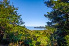 Spårsikt i Abel Tasman National Park, Nya Zeeland Royaltyfria Foton