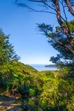 Spårsikt i Abel Tasman National Park, Nya Zeeland Royaltyfri Fotografi