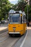Spårvagn 41 budapest Royaltyfria Foton