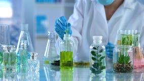 Spécialiste en laboratoire prenant le liquide avec la pipette pour examiner, développement de parfums d'eco photo libre de droits
